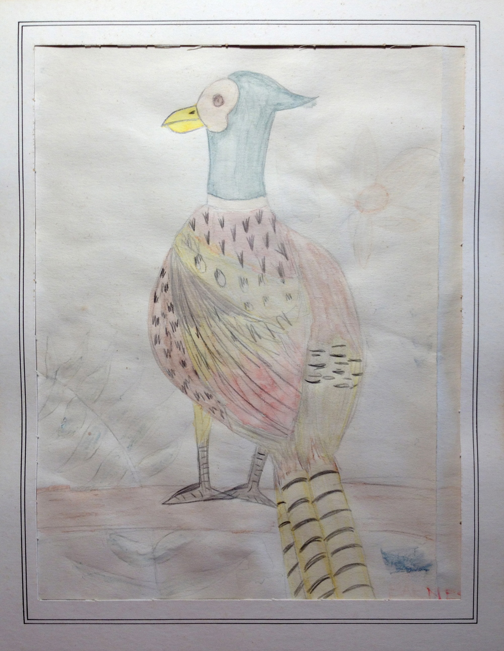 pp's pheasant.JPG