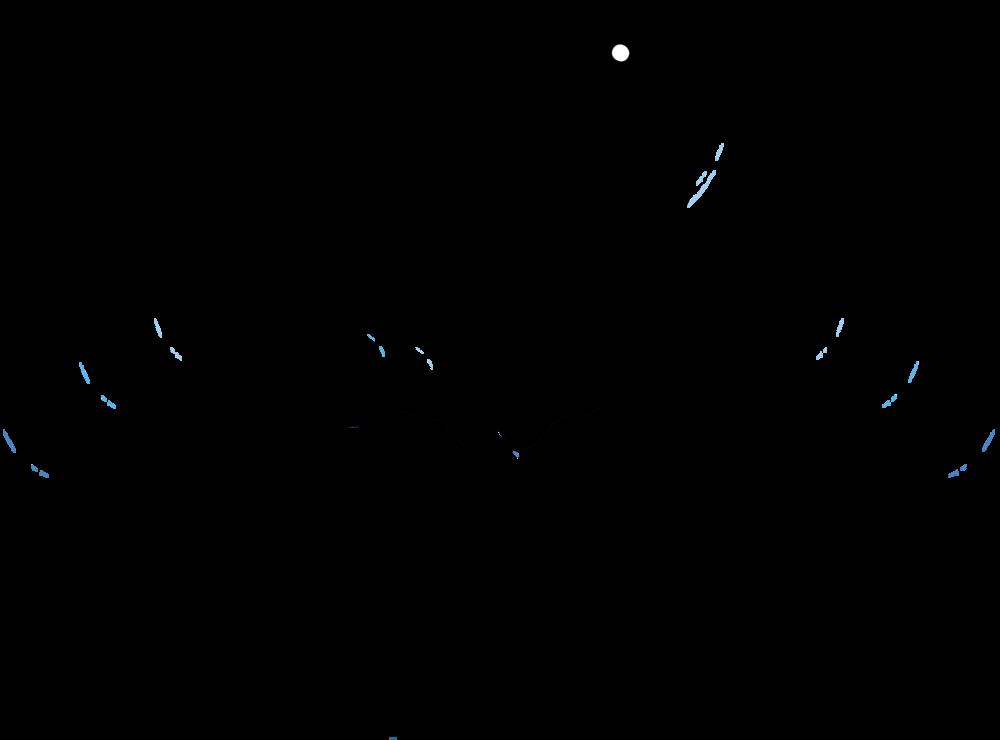 Image result for center for lit logo