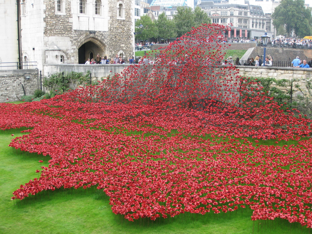Poppy installation, Tower of London - September 2014.