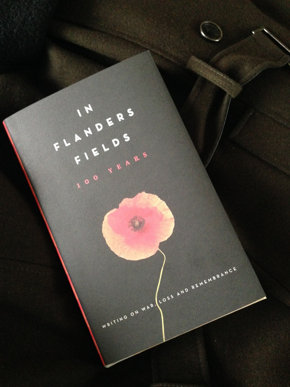 "A collection of essays, photos and illustrations.  The most interesting take on ""In Flanders Fields"" I have ever read.    In Flanders Fields 100 Years - Writing on War, Loss and Remembrance"