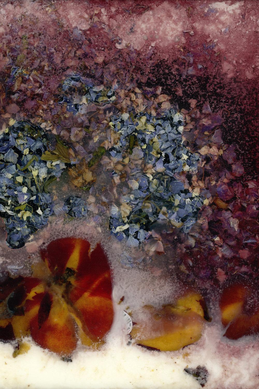 victoria marie bee, this unpretenious bouquet ,2017  [click on image for fullscreen]
