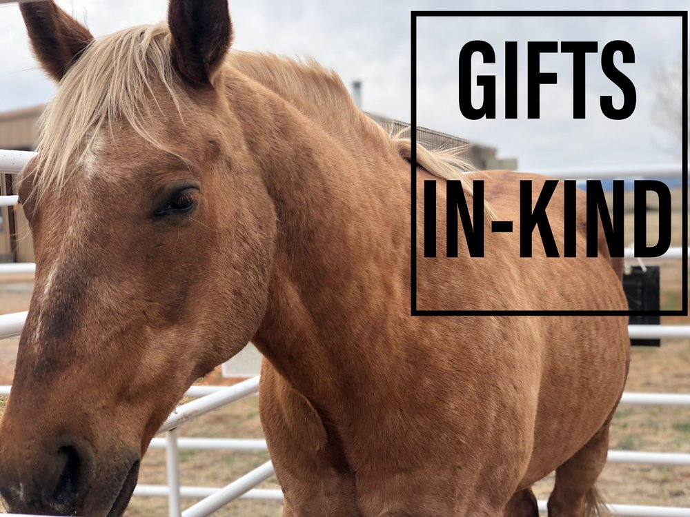 Gifts In-Kind - We have many needs for gifts in-kind so contact us to see if what you want to donate might be a good match! In-kind gifts include goods and donated services such as donating food, items, or donating professional services.Contact Theresa at: horsenaroundrescue@yahoo.com