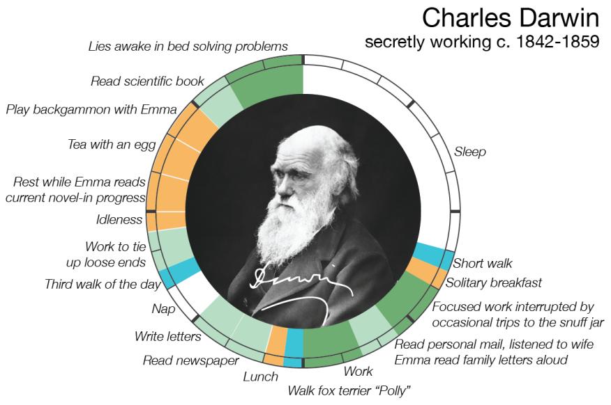 Darwin info