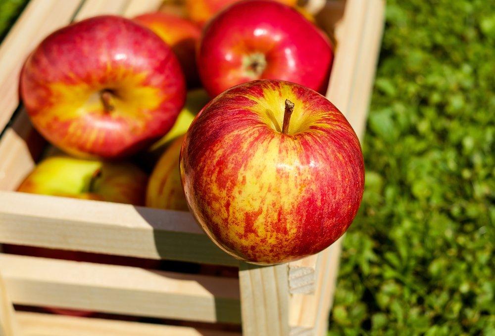 organic apple pulp