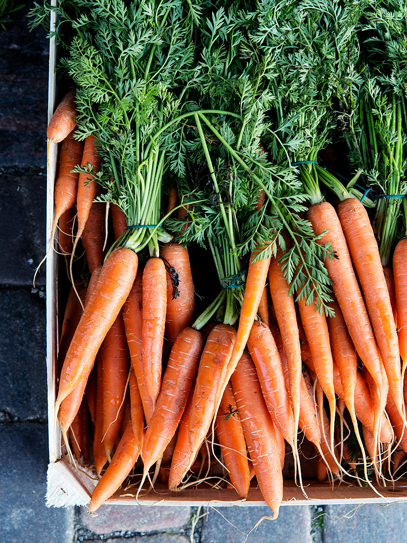 organic carrot pulp
