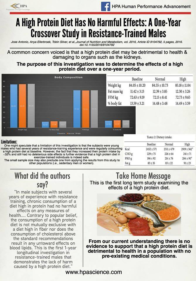 health effects of a high protein diet research