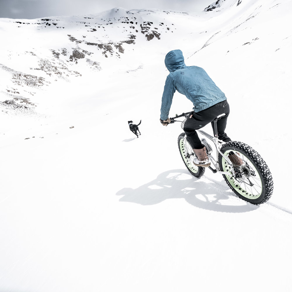 Dyer Fat Bike