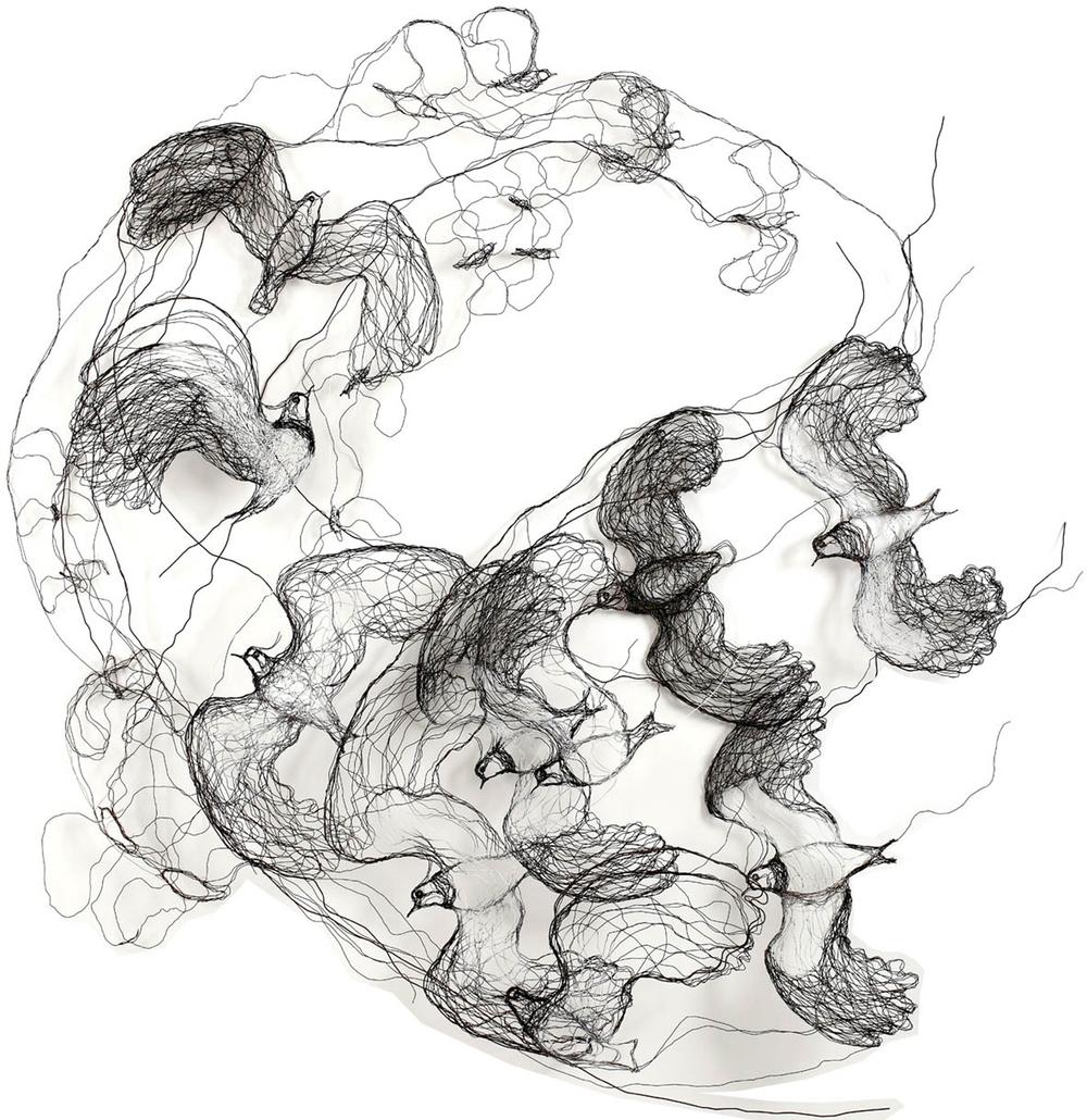 Swirling Lapwings