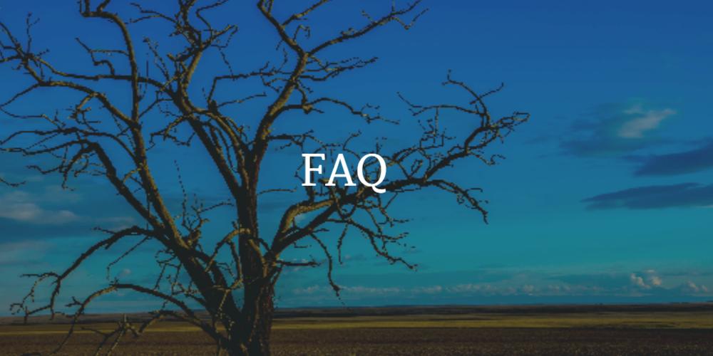 FAQ-Tigerlily-Consultants.jpg