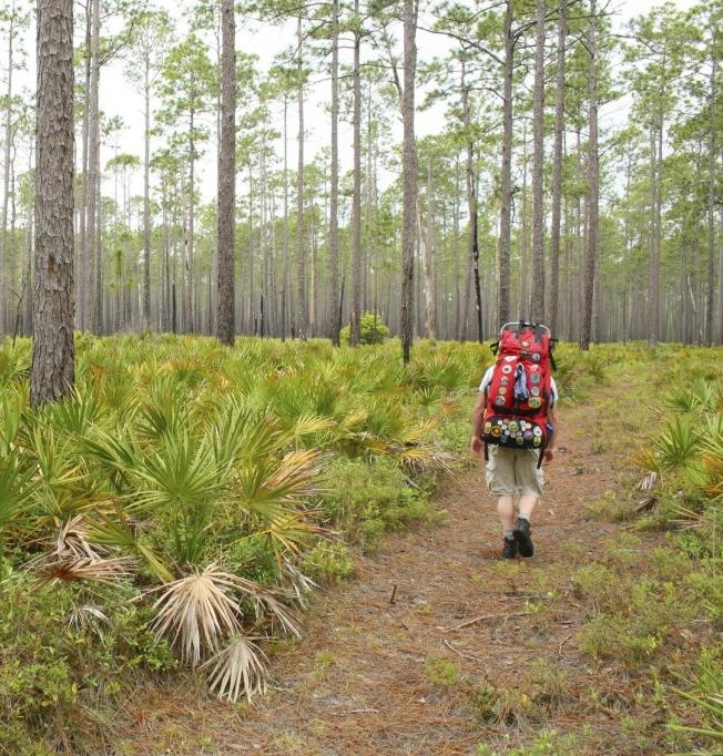 Florida National Scenic Trail