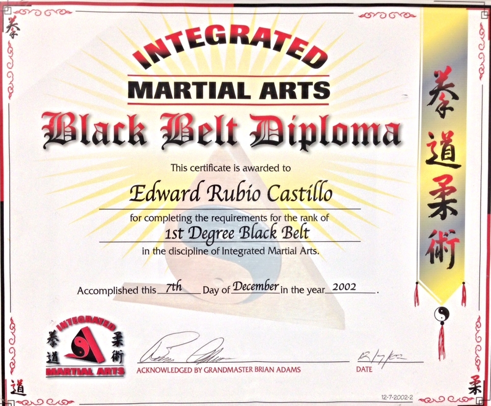 Martial arts dragon certificate template ticket format for word blank martial arts grading certificates events proposal sample 1437333456552 blank martial arts grading certificateshtml yelopaper Choice Image