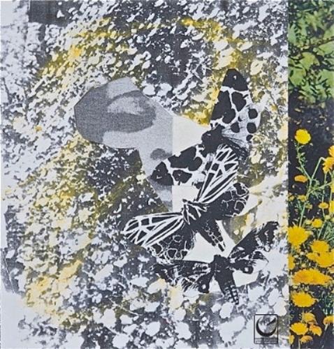 """Summer Months, Pastel, paper, 8 x 8,"""" 2014"""