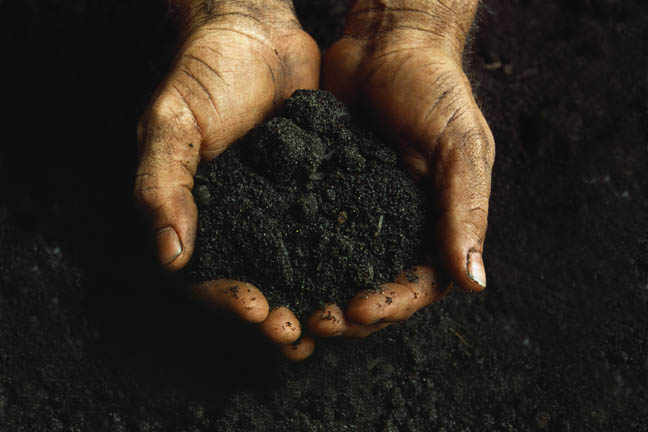 black-hands-in-soil.jpg