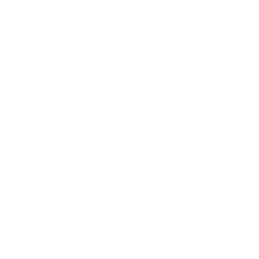 Vosseo