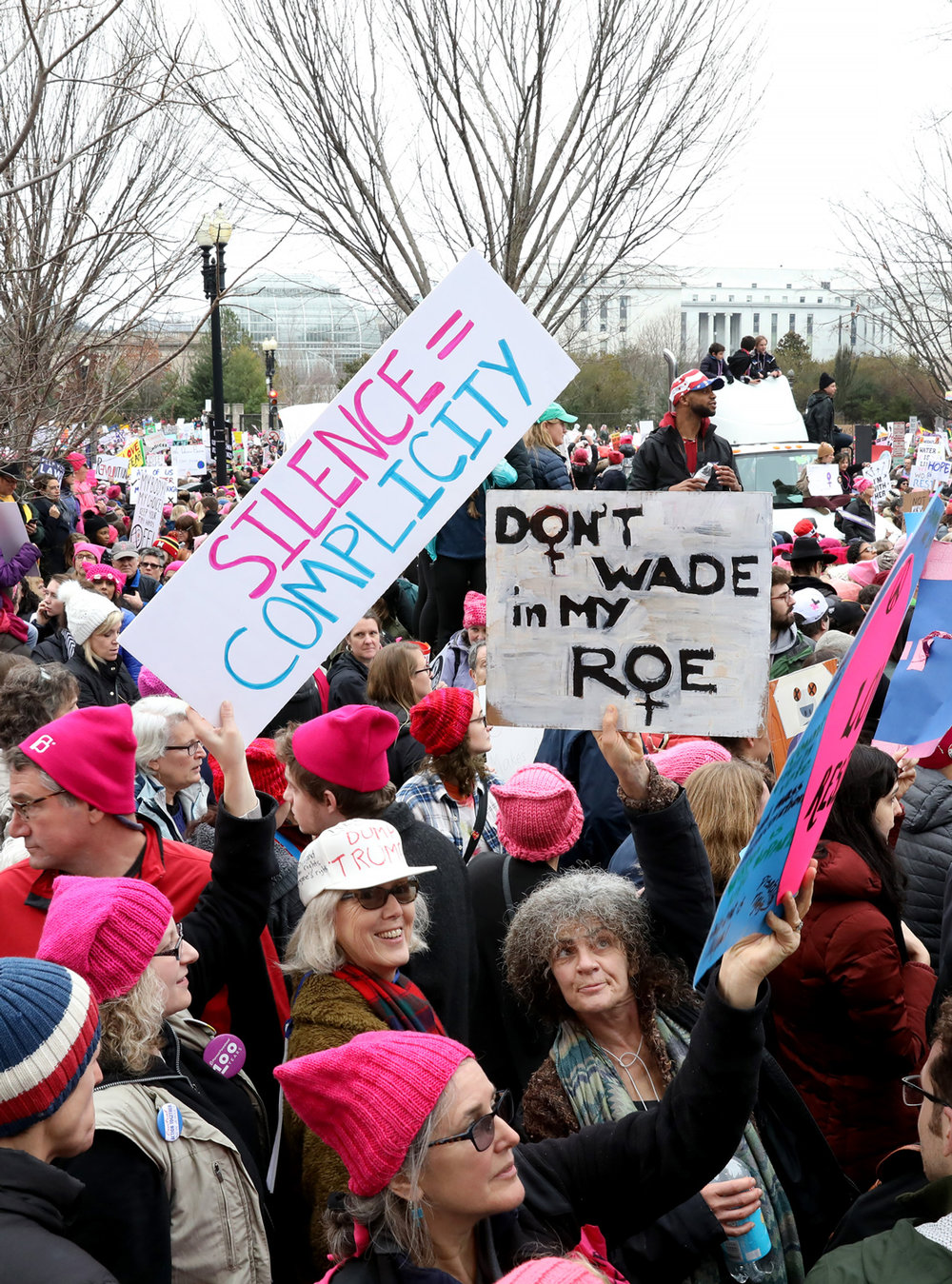Don't Wade in My Roe |  The Women's March | Washington, DC | January 21, 2017