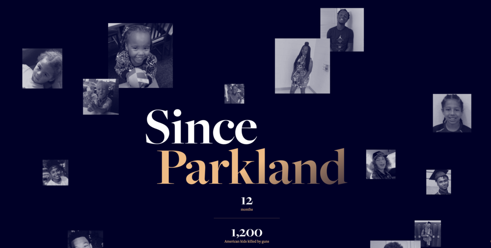 Since Parkland  website is a powerful reminder of the lives lost since Parkland.