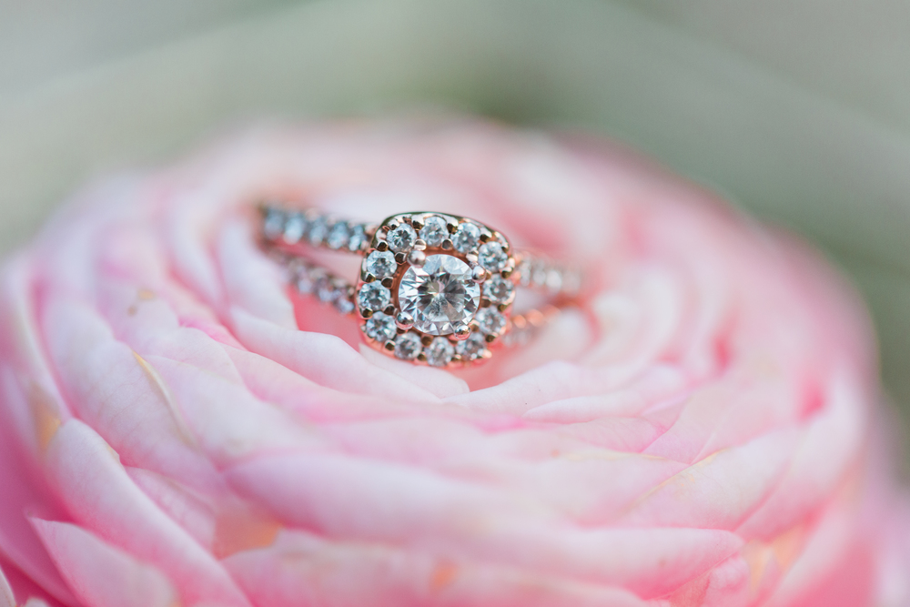 Dragonfly Photography by Miranda Engagement Ring