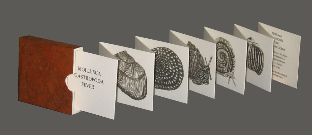 MULLUSCA_GASTROPODA_book.jpg