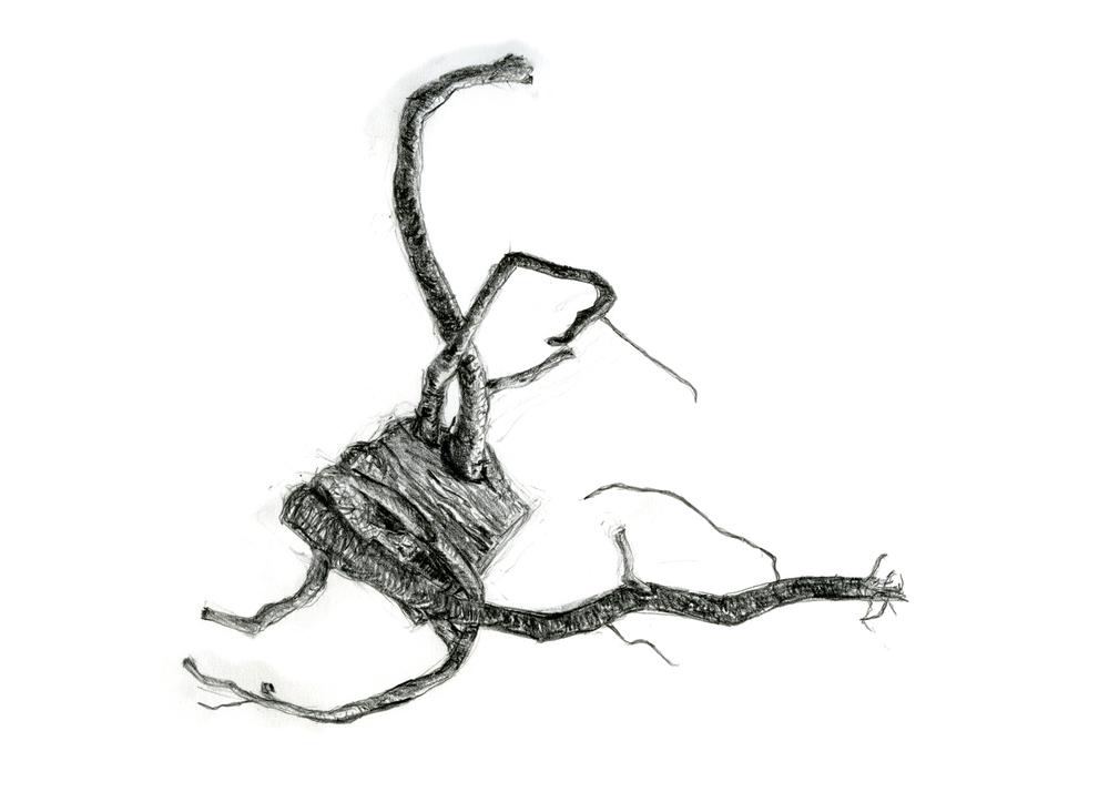 1 root metal 5x7.jpg