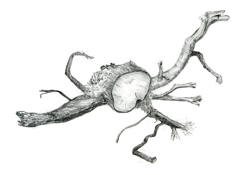 2-root-metal.jpg