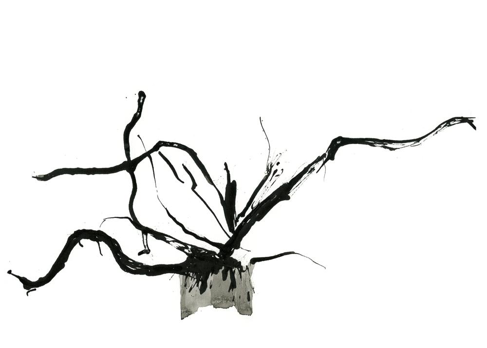 8a-root-metal-5x7.jpg