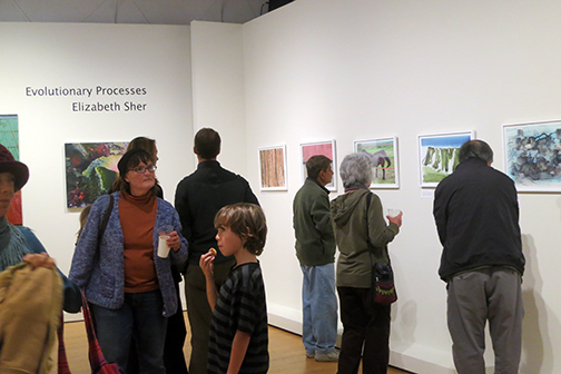 Evolutionary Processes Opening Reception April 4th, 2013