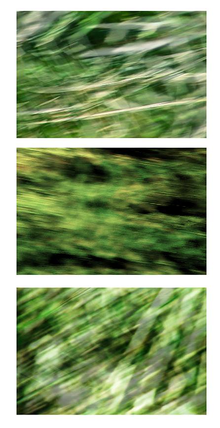 storm-triptych