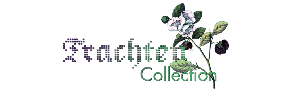 Trachtencollection_Logo_transparent.png