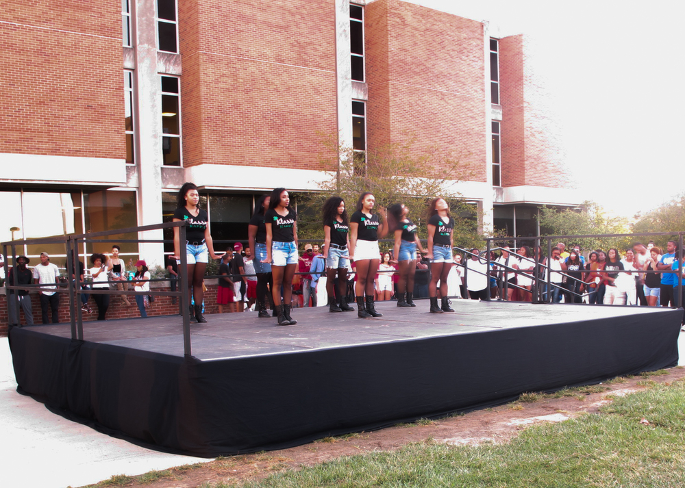 The sisters of Alpha Kappa Alpha share some of their history during their routine.