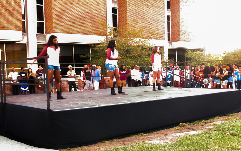 The ladies of Gamma Phi Omega end the night with a step performance.