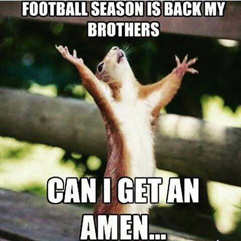 Photo cred:http://sportige.com/best-memes-celebrating-the-start-of-a-new-nfl-season-83681/
