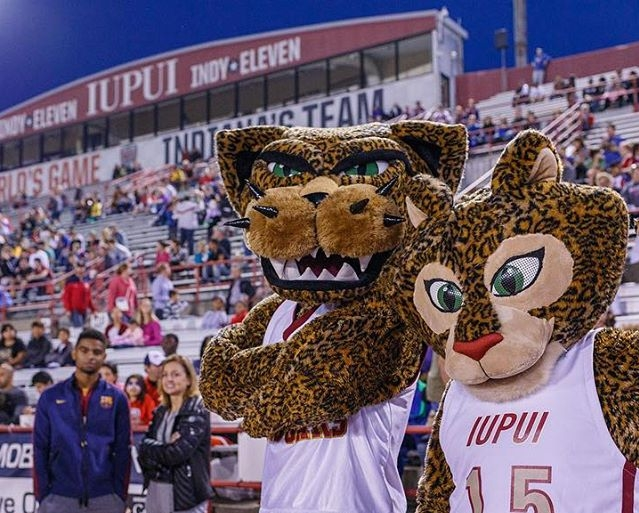IUPUI's Mascots Jaws and Jazzy at an Indy Eleven Game (iupui.edu)
