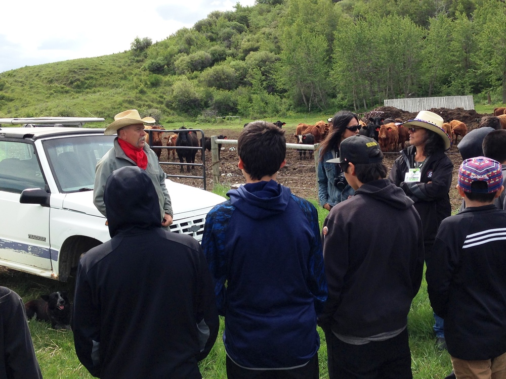 Students of Tatsikiisaapo'p Middle School learning about cattle & bears, and getting hands-on with electric fence.