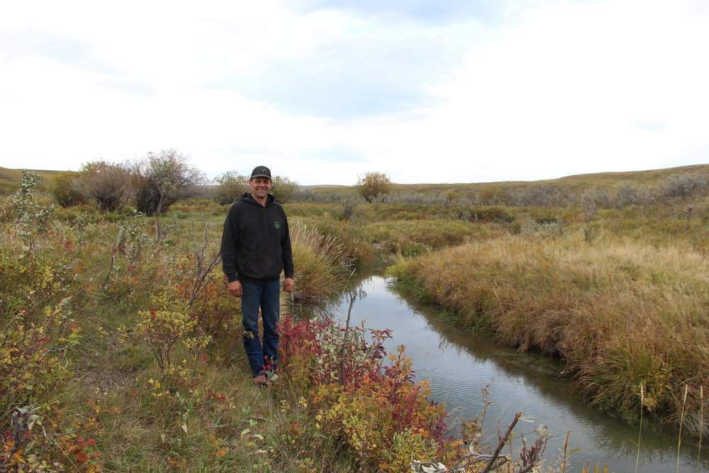 The riparian area of Lyndon Creek is in good health thanks to Gerald's good management.
