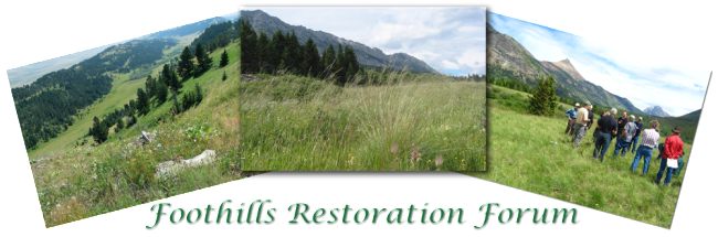 http://www.foothillsrestorationforum.ca/