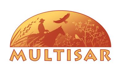 multisar.jpg