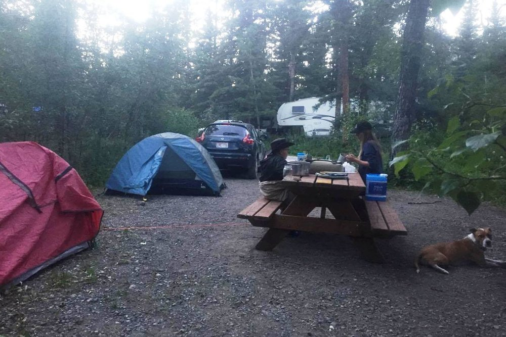 Camping is one way people connect with nature in our parks.
