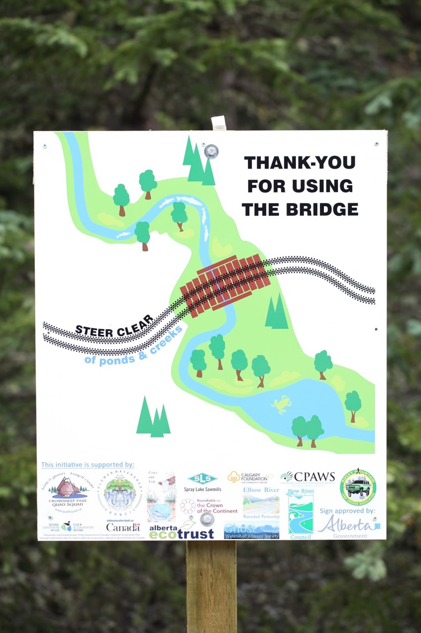 Thank you for using the bridge - If you see this sign, you most likely crossed a creek using a bridge. THANK YOU! When bridges are in place, it's important to use them because it keeps the fish happy (and alive!) and it makes everyone downstream happy. Clean water upstream means clean water downstream in our homes and backyards.  Together with Cows and Fish and the Junior Forest Rangers, we recently installed some 'Steer Clear' and 'Thank you for using the bridge' signs on Gold Creek. If you aren't able to see them for yourself, check them out on Flickr.