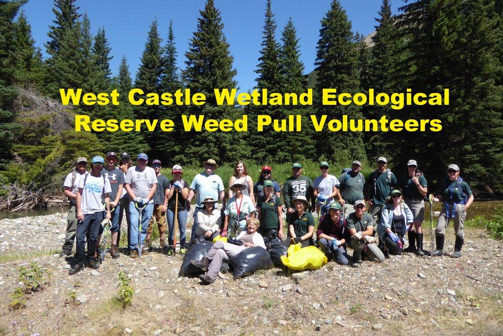 WCWER weed Pull_Group_25JULY17.jpg