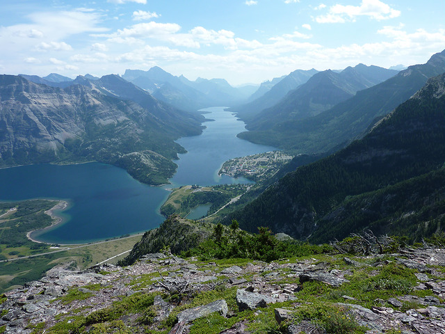 This photo from August 2012 was taken by John Russell from north of the Waterton townsite. The townsite, Bear's Hump, and the campground are all visible in the centre of the photo, nestled in the lush green vegetation established during  80+ years without fires .