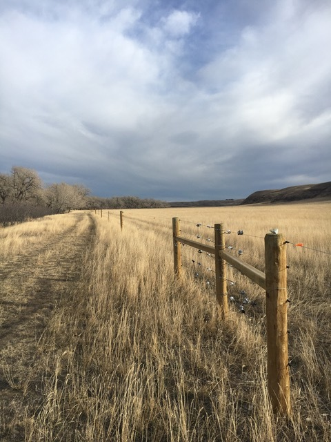 Sweetgrass Bison Riparian Fencing 2017-2018