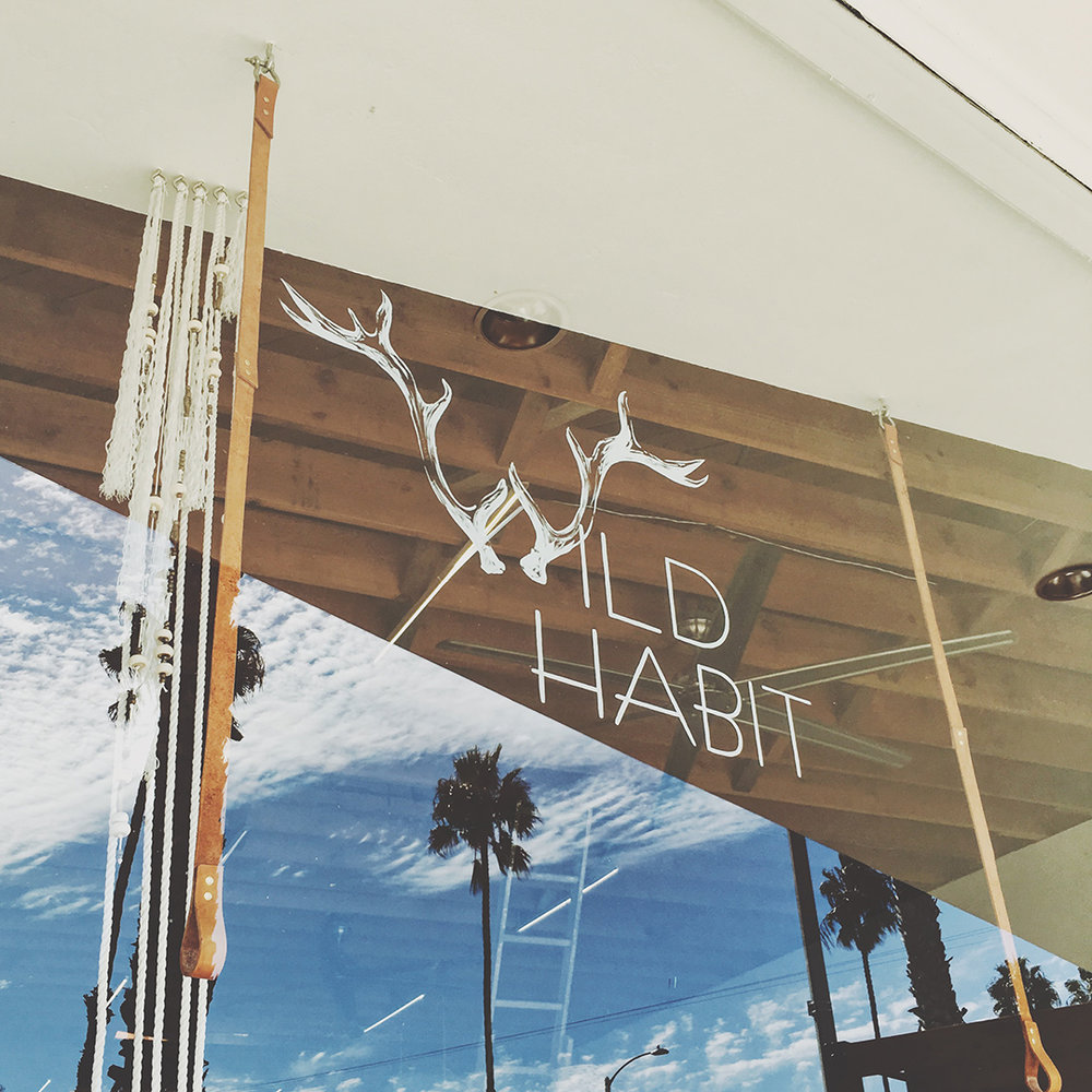 wildhabit_window_logo.jpg