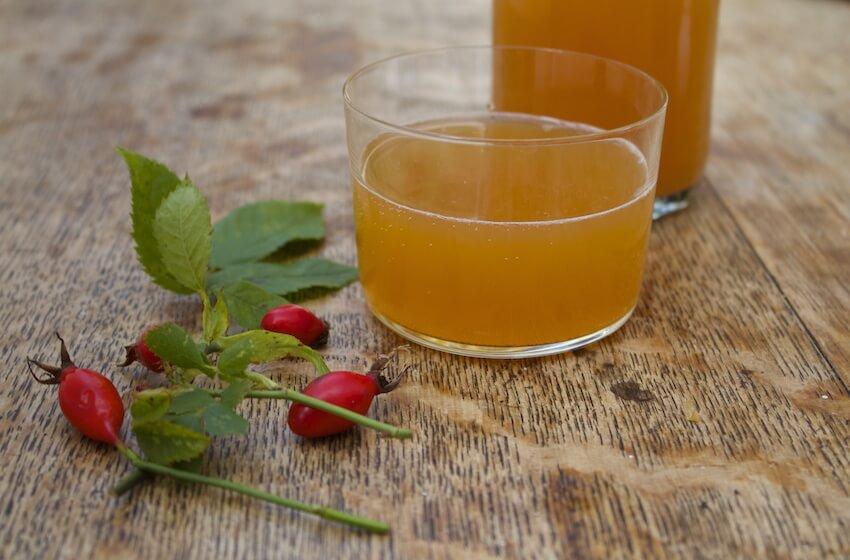 Fermented Rosehip Soda.jpg