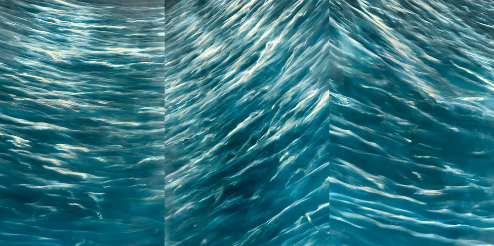 Sea Change Set i-iii Triptych