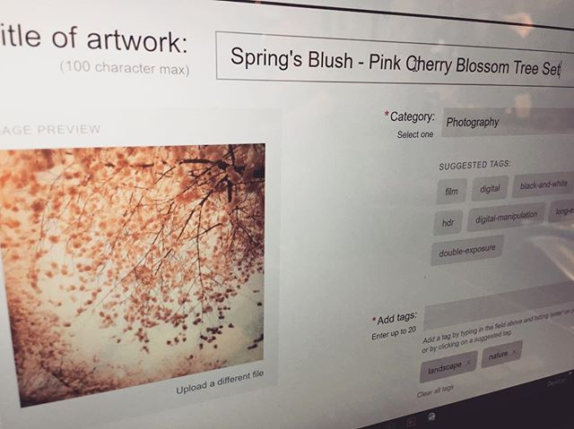 Been working on updating my @society6 page for Illumina Photographics so you can actually find my work there. It's a marathon, not a sprint! . . . #podproducts #photoproducts #lifeoftheartist