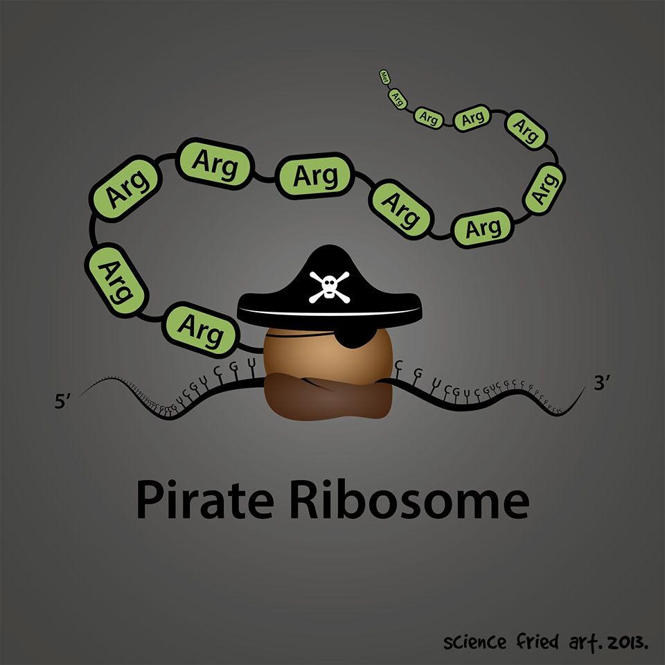 Pirate Ribosome from science fried art