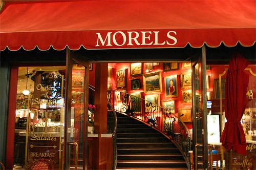 Morels].jpg