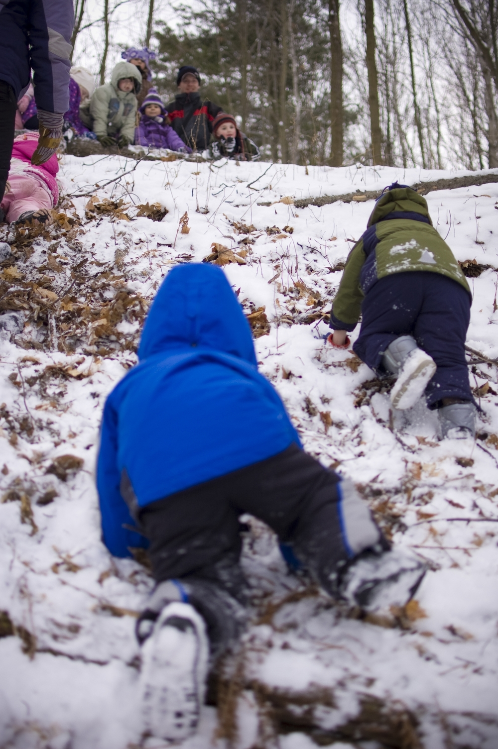 Children at  Chippewa Nature Center's Nature Preschool  are outside for half of their class day unless the weather is dangerous (i.e., thunderstorms).