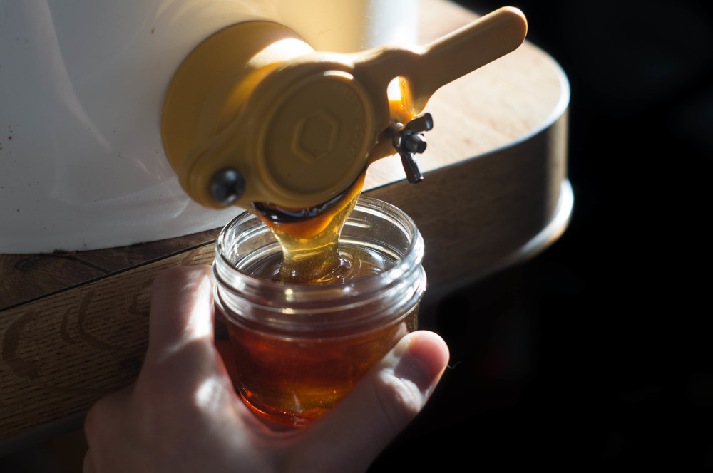 honey-from-tap