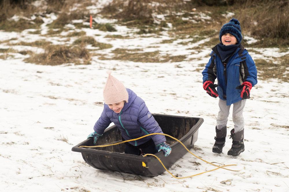 Christmas Tree Chop Kids Sledding by Samantha Spigos